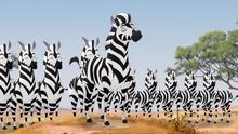 The-zebra-mastermind (99)