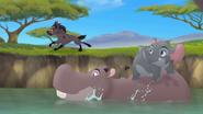 Follow-that-hippo (323)