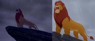 Roar collage