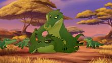 Let-sleeping-crocs-lie (380)