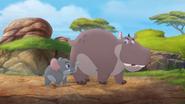 Follow-that-hippo (109)