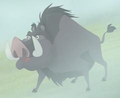 TLGForest Hog