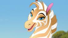 The-golden-zebra (170)