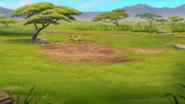 The-imaginary-okapi (33)