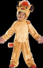Tlg-costumev1