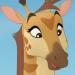 Giraffes-profile