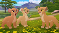 Baboons (273).png