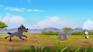 Follow-that-hippo (266)