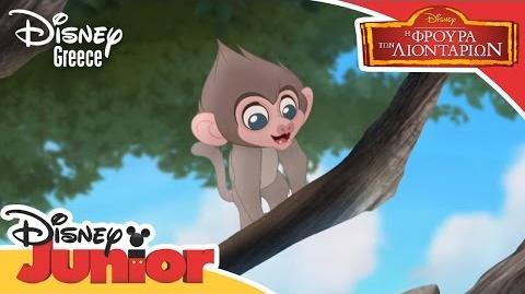 Baboons! (Greek)