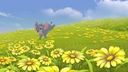 Follow-that-hippo (187)