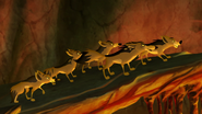 The-scorpions-sting (515)