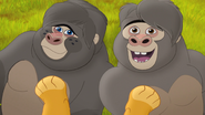 The-lost-gorillas (63)