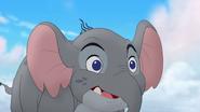 Follow-that-hippo (259)