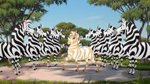 The-golden-zebra (166)