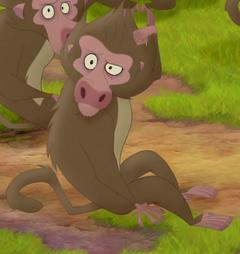 Baboon-3