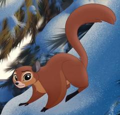 Female Flying Squirrels