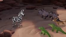 The-zebra-mastermind (512)