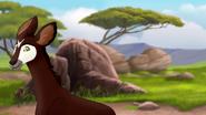 The-imaginary-okapi (77)
