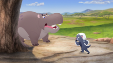 The-traveling-baboon-show (251)