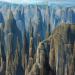 Stoneforest-profile
