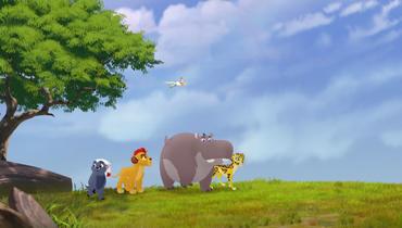 Baboons (3)