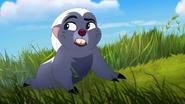 Follow-that-hippo (240)
