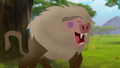 Baboons (133).png
