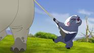 Ono-the-tickbird (47)