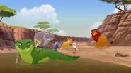 Let-sleeping-crocs-lie (524)
