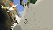 Ono-the-tickbird (43)