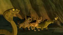 The-scorpions-sting (55)
