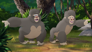 The-lost-gorillas (185)