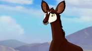 The-imaginary-okapi (319)
