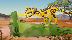 The-hyena-resistance (8)