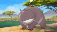 Follow-that-hippo (364)