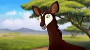 The-imaginary-okapi (502)