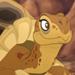 Tortoises-profile
