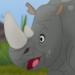 Rhinos-profile