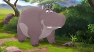 The-imaginary-okapi (38)