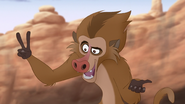 The-traveling-baboon-show (488)