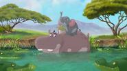 Follow-that-hippo (348)