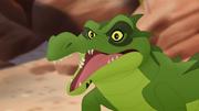 Let-sleeping-crocs-lie (66)