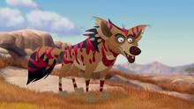 The-zebra-mastermind (342)