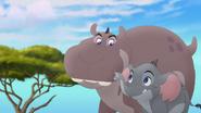 Follow-that-hippo (208)