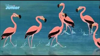 The Lion Guard Flamingo Dance Party (Norwegian)