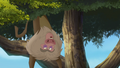 Baboons (140).png