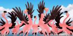 Flamingogirlstand-profile