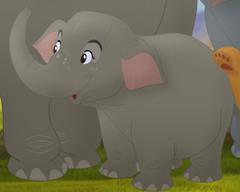 Mh-elephant4