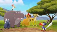 The-lost-gorillas (21)