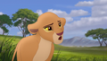 Baboons (14).png